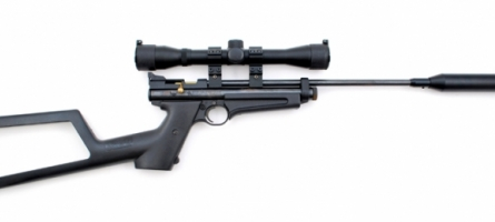 Crosman Ratcatcher (2250)