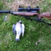 Air Arms S410 carbine hunting modified barrel